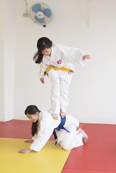 meerleergeld haarlemmermeer taekwondo
